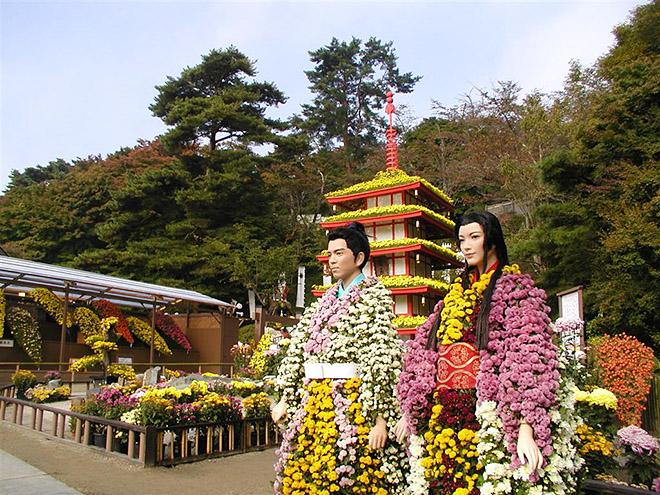 二本松市東和地区 高林寺のアジサイ