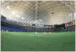都市対抗野球大会/第83回 都市対抗野球大会 東京都代表決定戦